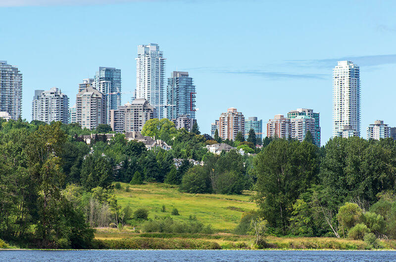 Property Management Burnaby - Tribe Management