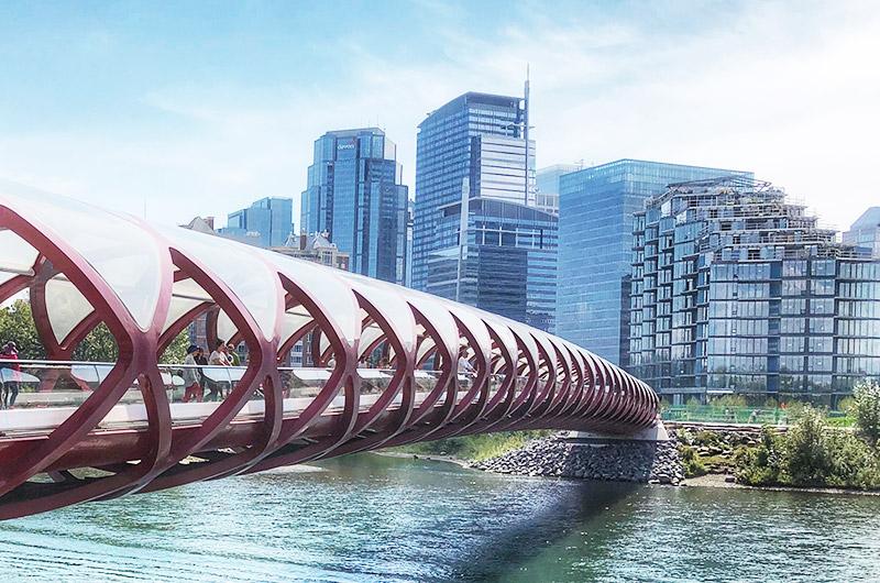 Property Management Calgary - Tribe Management